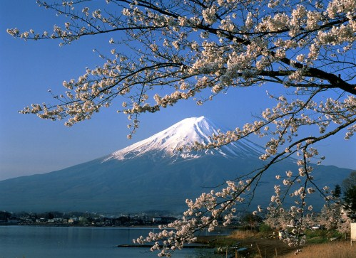 JAPAN TOUR (6) DAYS